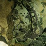 Antikythera mechanism - close up photo